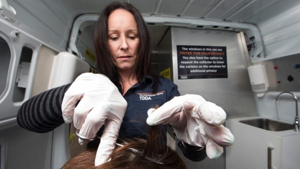 TDDA operations manager Jennie King takes a sample of a potential workers' hair.