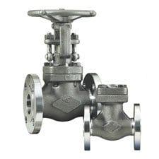 dsi-forged-steel-globe-valve.jpg